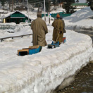 Snow Sledding in GUlmarg